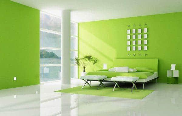 Phối màu xanh lá và trắng